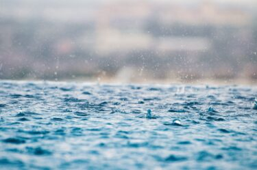 2021年2月26日 朝から雨は気分が重たい